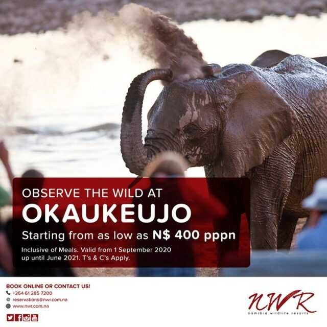 Spend some time at the world-famous Okaukeujo waterhole. #Namibia #Africa #travelafrica #travel #tourist #NWR #instatravel  #NWRMoments